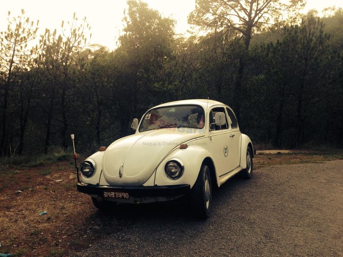 Vintage Volkswagen Beetle For Sale Price Rs Kathmandu - Classic car prices